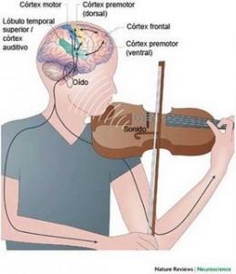 Saúde | Música e Cérebro